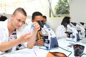 Des étudiants regardent dans un microscope ou à travers un tube Falcon